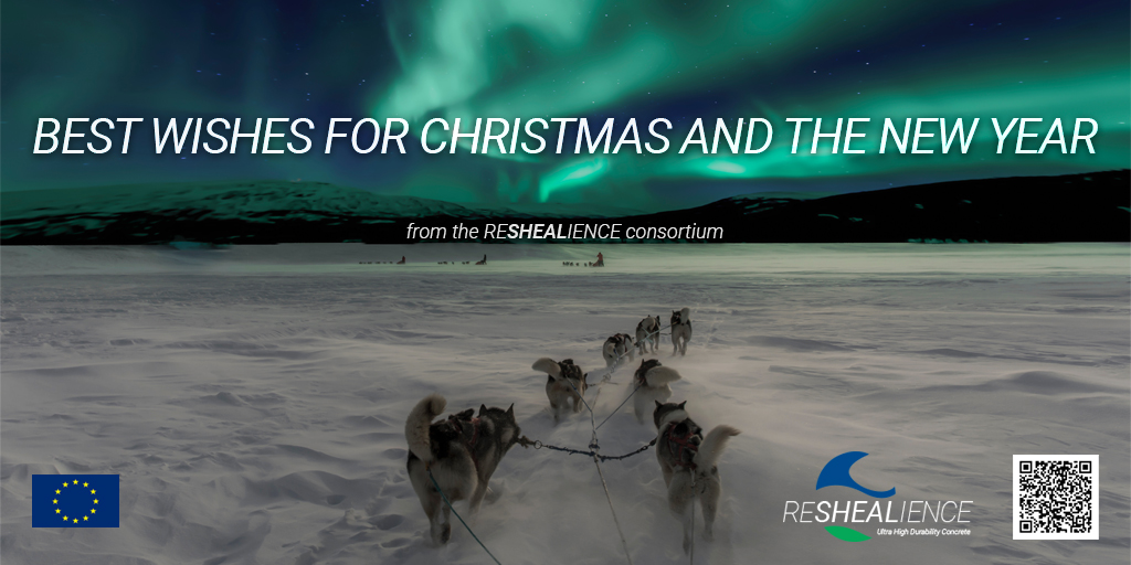 Merry Christmas card from ReSHEALience
